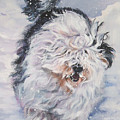 Old English Sheepdog  by Lee Ann Shepard
