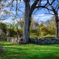 Old Family Plot In Cromwell Valley Park by Doug Swanson