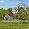Old Farm House In Langley by Randy Harris