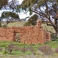 Old Farm House Ruin  by Denise Walding