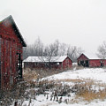 Old Farm Sheds In Snow by Laurie With