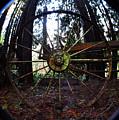 Old Farm Wagon Wheel by Clayton Bruster
