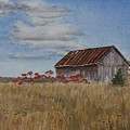 Old Farmer's Barn by Debbie Homewood