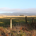 Old Fence And Landscape Along Sir Francis Drake Boulevard At Point Reyes California . 7d9965 by Wingsdomain Art and Photography