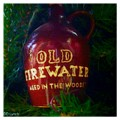 Old Firewater Aged In The Woods by Debra Lynch