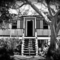Old Florida Cottage by Perry Webster