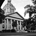 Old Florida State Capitol by Wayne Denmark