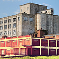 Old Flour Mill by Linda James