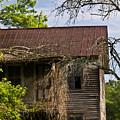 Old Forgotten Farm House by Douglas Barnett