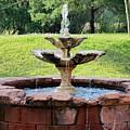 Old Fountain by Mesa Teresita