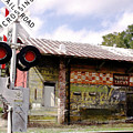 Old Freight Depot Perry Fl. Built In 1910 by Marilyn Holkham