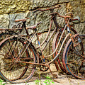 Old French Bicycles by Debra and Dave Vanderlaan