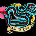 Old Friend Red-sided Gartersnake by Donovan Winterberg