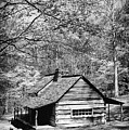 Old Frontier Cabin  by Paul W Faust -  Impressions of Light