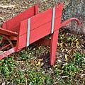 Old Garden Wheel Barrow by Douglas Barnett