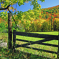 Old Gate At East Orange by Gary Corbett