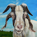 Old Goat - Painting By Cindy Chinn by Cindy D Chinn