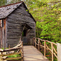 Old Grist Mill by Bob Phillips