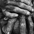 Old Hands 3 by Skip Nall