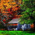 Old Homestead And The Apple Tree by Vicki Lea Eggen