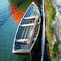 Old Irish Boat by Francine Hall
