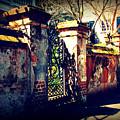 Old Iron Gate In Charleston Sc by Susanne Van Hulst
