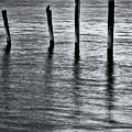 Old Jetty - S by Werner Padarin