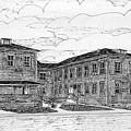 Old Lilly Lab At Mbl by Vic Delnore