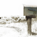 Old Mailbox by K Powers Photography