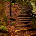 Old Man's Stairs by Scott Heaton