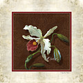 Old Masters Reimagined - Cattleya Orchid by Audrey Jeanne Roberts