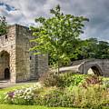 Old Medieval Bridge At Warkworth by David Head