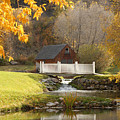 Old Mill In Autumn by Dennis Hammer