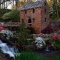 Old Mill by Renee Hardison