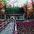 Old Mission Point Cabin by Wayne Potrafka