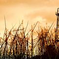 Old Oil Tower by Antoni Halim