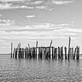 Old Pier Provincetown Harbor Cape Cod by Edward Fielding