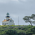 Old Point Loma Lighthouse by Susan McMenamin