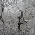 Old Pumpjack by Deena Keller