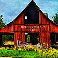 Old Red Barn And Wild Sunflowers by Anna Louise