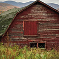 Old Red Barn In Fall Adirondacks Ny by Terry DeLuco