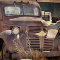Old Red Dodge Truck by Janice Pariza