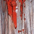 Old Red Paint by Penny Haviland
