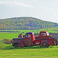Old Red Trucks Vermont New England by Toby McGuire