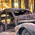 Old Relic In The Woods by Mary Lou Chmura