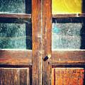 Old Rotten Door by Silvia Ganora
