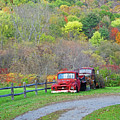 Old Rusted Trucks Bethel Vermont Vt New England Foliage Aurumn Trees by Toby McGuire