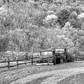 Old Rusted Trucks Bethel Vermont Vt New England Foliage Autumn Trees Black And White by Toby McGuire
