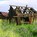 Old Shack At The Gorge Ba 3000 by Mary Gaines