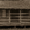 Old Shack In Sepia by Dale Powell